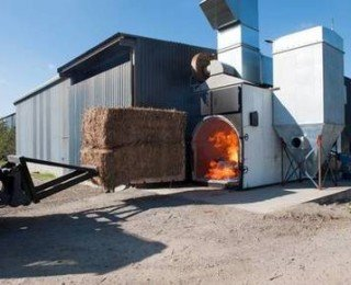 We need to provide farmers with more incentives to grow biomass crops such as Miscanthus