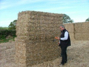 Mike Cooper checking the moisture in miscanthus giganteus bales