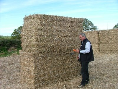 Mike Cooper checking the moisture in miscanthus bales