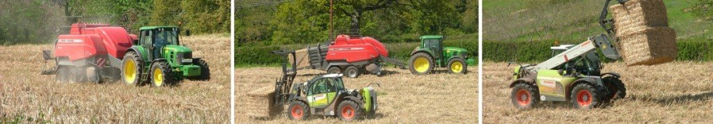 Images of Miscanthus being baled