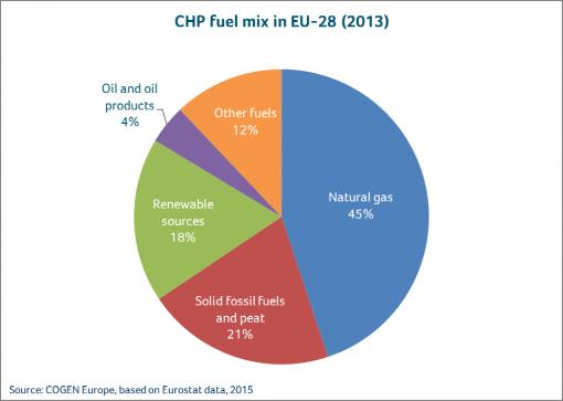 Pie chart of different fuels used in CHP