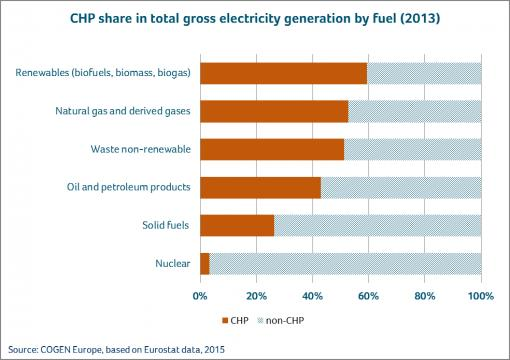 CHP share in total gross electricity generation bar chart - 2013